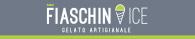 Logo Fiaschin ICE - insegna